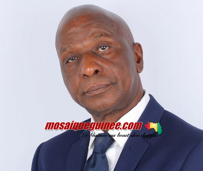 """Des ministres en mission de remerciement : """"c'est contre-productif"""" (Fodé Mohamed)"""